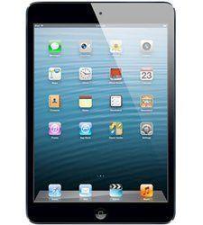 iPad Mini Parts
