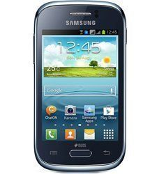 Samsung Galaxy Young Parts